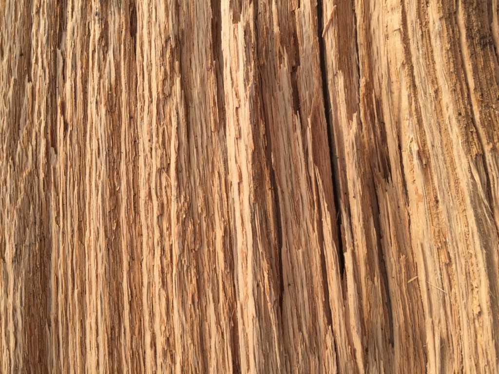 Free Wood Textures Go Media