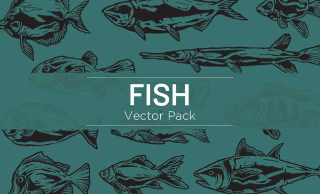 fish-vector-pack-hero-2