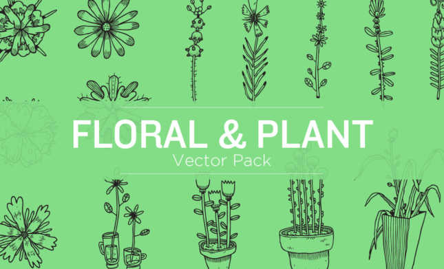 floral-vectors-hero-image