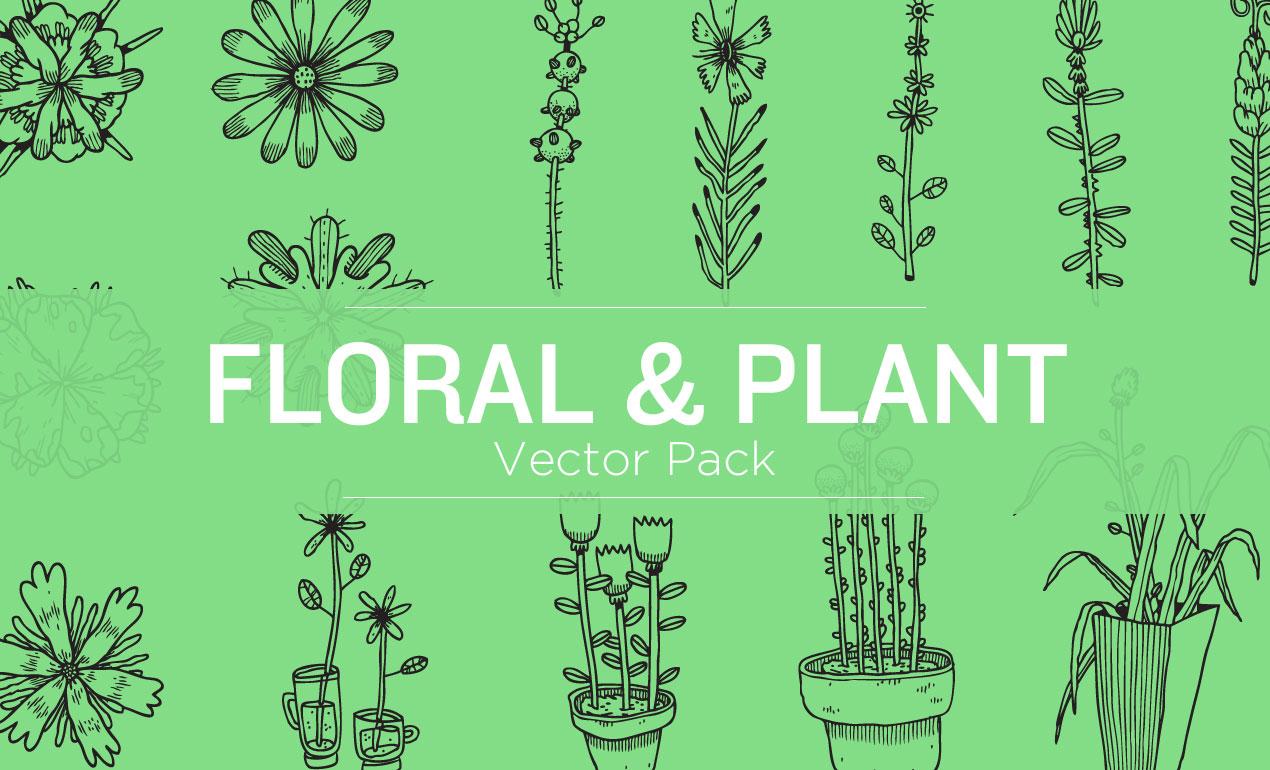 floral-vectors-hero-image