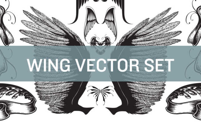 Wing-Vector-Set-Hero