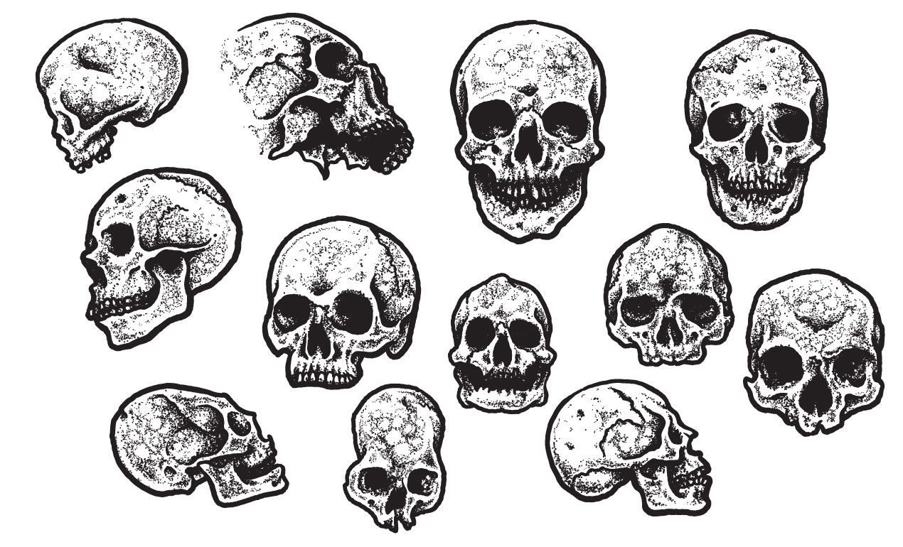 Jeff Finley's Skull Vector Pack for Go Media