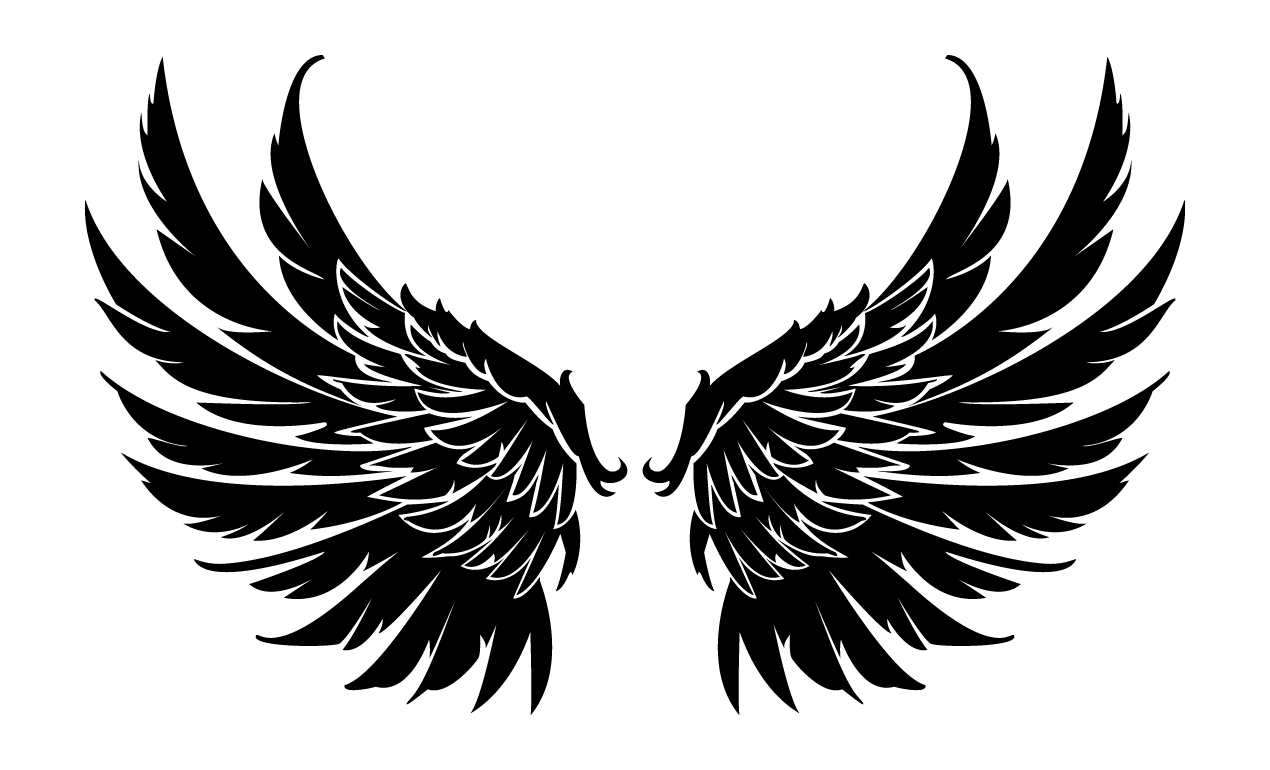 Falcon wings spread drawing