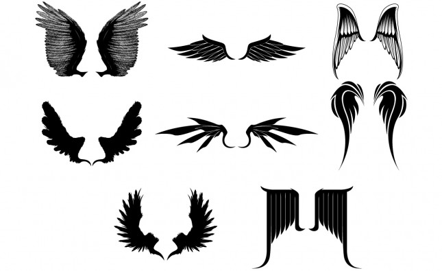 Adobe Illustrator Vector Set 02 Wings Preview All
