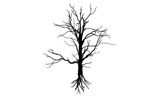 Tree Vector Shapes Pack 2