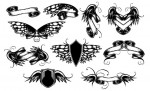 Winged Scrolls Vector Pack for Adobe Illustrator