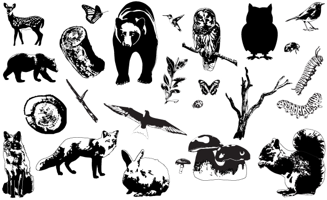 Adobe Illustrator Vector Woodland Creatures Preview All 645x395