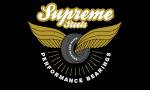 vintage-skateboard-logos-preview-3