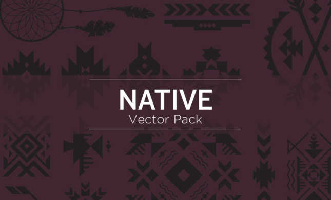 Native-Vectors-Hero-Image