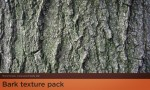 Adobe Photoshop Texture  Texture Collection 02 Bark Pack 01 Hero Shot