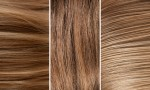 Adobe Photoshop Texture  Texture Pack 04 Skin And Fur Previews 05
