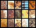 Adobe Photoshop Texture  Tex Rust2 Preview
