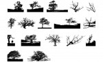 Adobe Illustrator Tree Vector Pack
