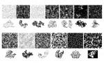 Ornate Patterns Vector Pack for Adobe Illustrator