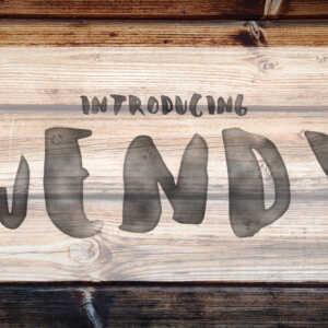 wendy display font